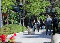 Access - Sundbybergsvägen 1, Solna