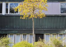 Prästgårdsängen 21, Centrum