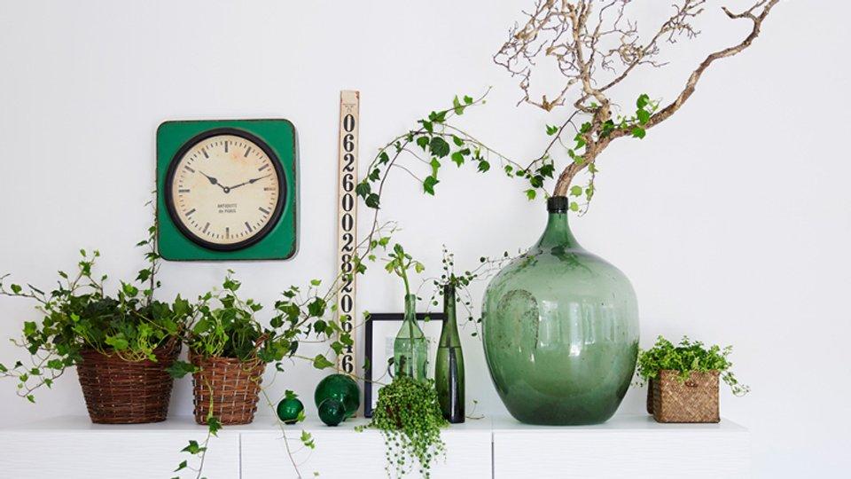 Växter förbättrar kontorsmiljön.jpg