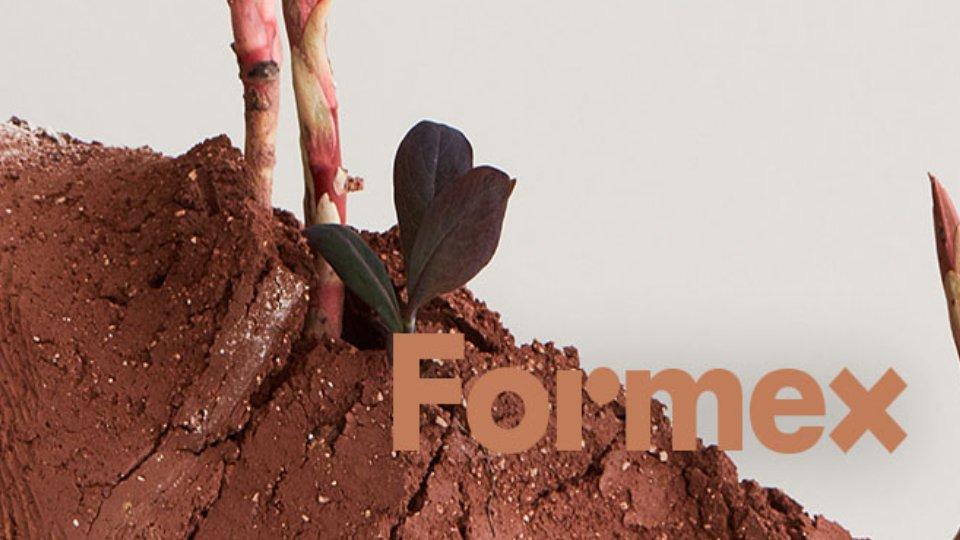 formex.jpg