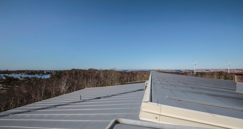 Utsikt från tak