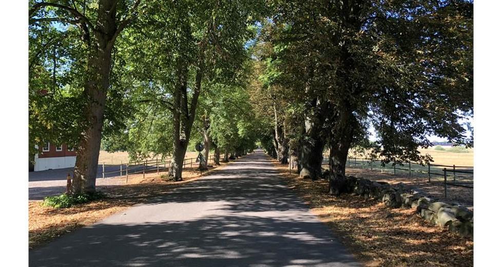 Vasatorps gård